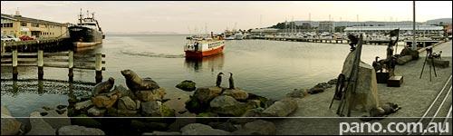 Hobart, Constitution Dock